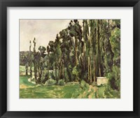 Framed Poplars