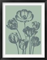 Framed Tulip 8