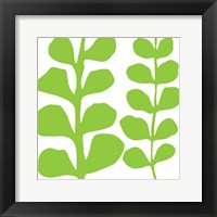 Green Fern on White Framed Print