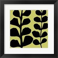 Black Fern on Green Framed Print