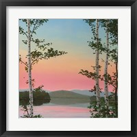 Framed Cooper Sunset Birches