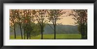 Framed Hazy, Woodstock