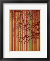 Amber Stripe Framed Print