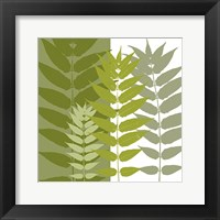 Garden Greens Framed Print
