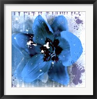 Tulip Fresco (blue) Framed Print