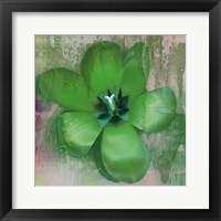 Tulip Fresco (green) Framed Print