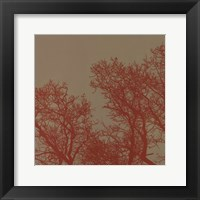 Framed Cinnamon Tree I