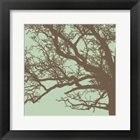 Framed Winter Tree III