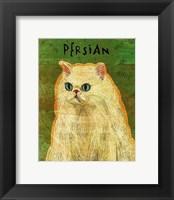 Framed Persian