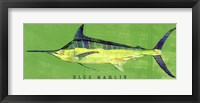 Framed Blue Marlin