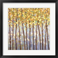 Framed Glistening Tree Tops
