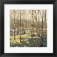 Framed Trees in Blue Green