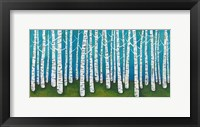 Framed Springtime Birches