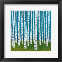 Framed Birch Grove