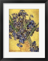Framed Irises in Vase