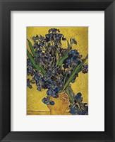 Framed Irises in Vase