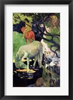 Framed White Horse, 1898