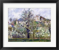 Framed Vegetable Garden with Trees in Blossom, Spring, Pontoise, 1877
