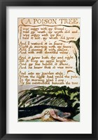 Framed Poison Tree, from Songs of Experience