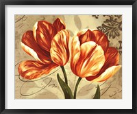Colori II Framed Print