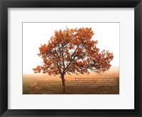 Framed Silent Oak