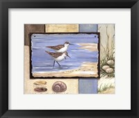Sandpiper Collage I - mini Framed Print
