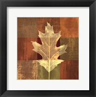 Framed Fall Leaf II