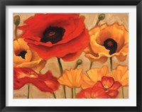 Framed Poppies