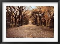 Framed Central Park I