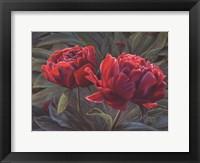 Framed Flowers II