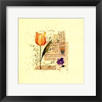 Framed Flower Notes with Orange Tulip