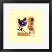 Framed Flower Notes with Blue Poppy