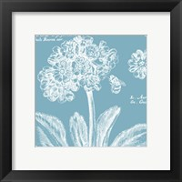 Summer Bees IV Framed Print