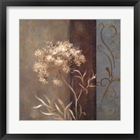 Delicate Beauty in Blue II Framed Print