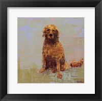 Framed Golden Dog No. 2