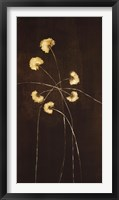 Framed Night Blossoms I