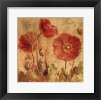 Summer Poppies I Framed Print