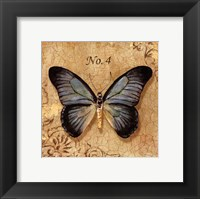 Framed Clair's Butterfly I