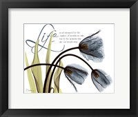 Framed Mineral Blue Tulips...Life