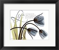 Mineral Blue Tulips...Life Framed Print