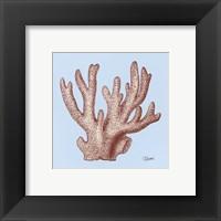 Coral I Framed Print