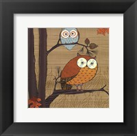 Framed Awesome Owls I