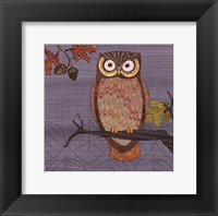 Awesome Owls II Framed Print