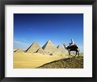 Framed Man riding a camel near the pyramids, Giza, Egypt
