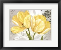Colori Yellow II Framed Print