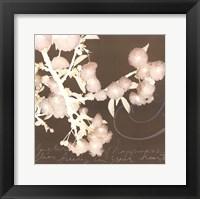 Wishes & Leaves II Framed Print