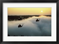 Framed AH-16 (Cobras) Attack Helicopters