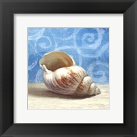 Gifts from the Sea I Framed Print