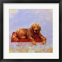 Framed Golden Dog
