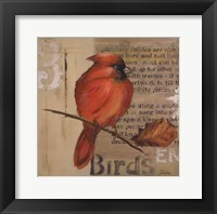 Red Love Birds II Framed Print